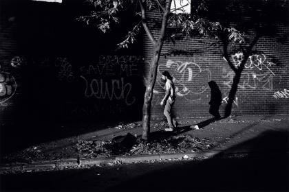 Untitled (Josh #56), 2008